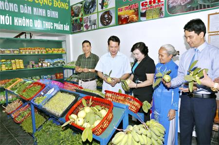 Các đại biểu tham quan gian hàng nông sản an toàn Minh Công. Ảnh: Đức Lam